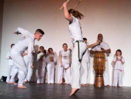 089-capoeira-ms