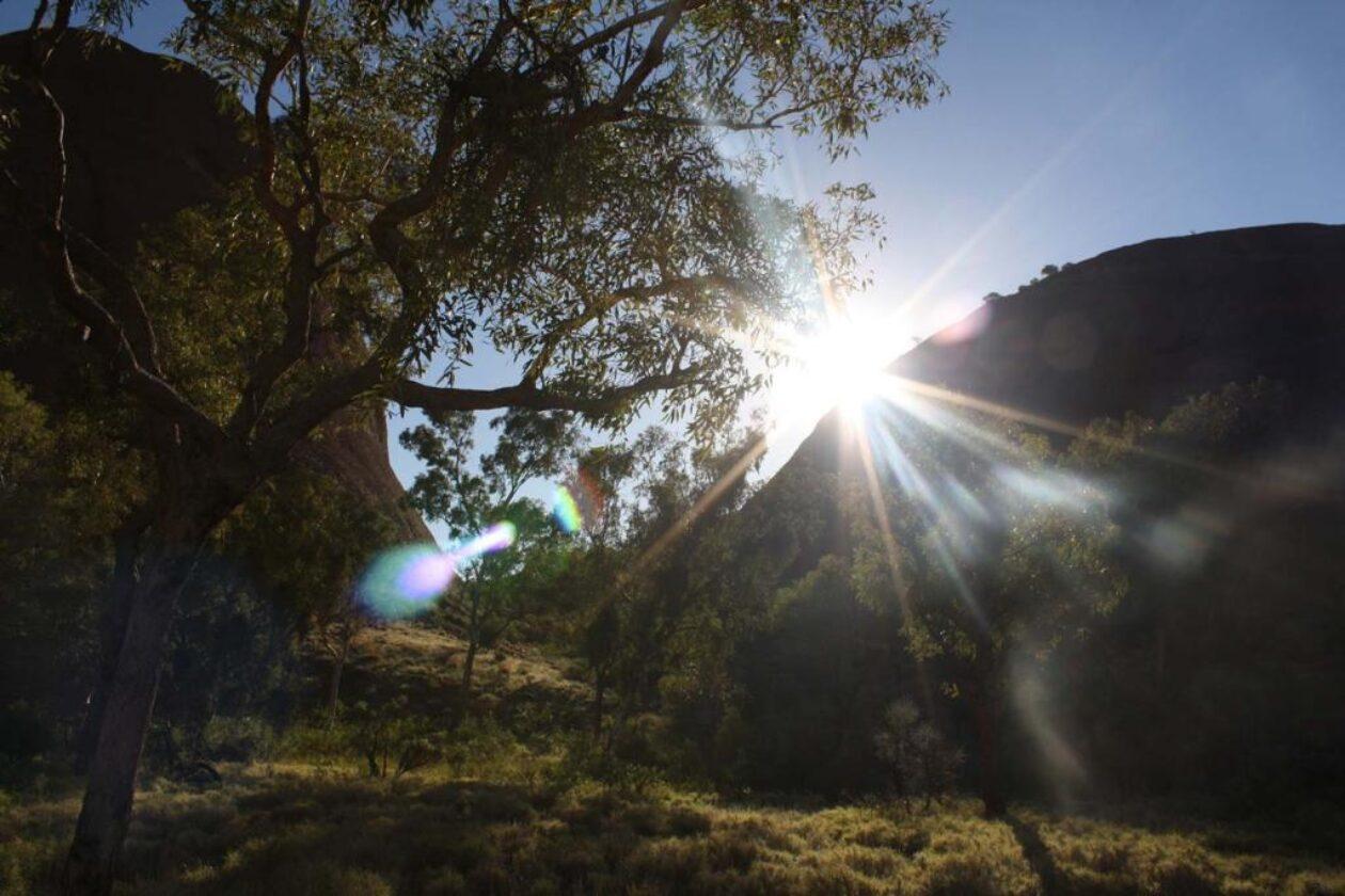 Uluru-web