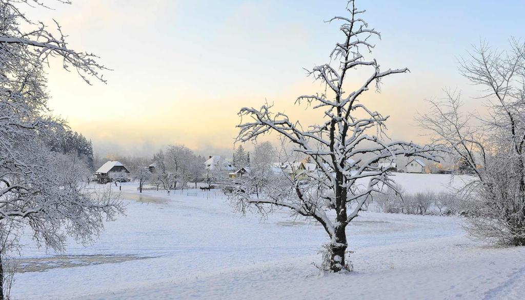 winterlandschaft-wikimedia-common-free-vkl