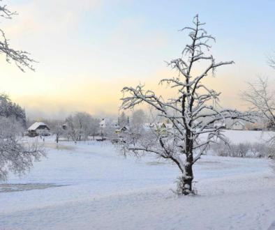 winterlandschaft-wikimedia-common-free-vkl